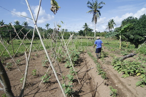Ecological Agriculture Farmer in Samar