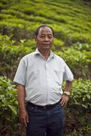 Manager of Small Tea Growers Association at Meghalaya