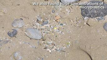 Beach Clean up and Sampling Activity in Greece - Web Video (ENG)