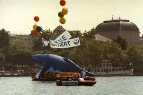 Whaling Action against JAL in Zurich