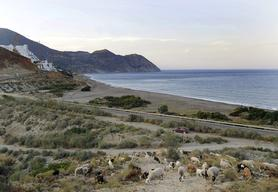 Coastal Development in Spain
