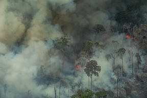 Forest Fires in Candeiras do Jamari, Amazon - Second Overflight (2019)