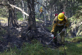 Extinguishing Forest Fires in the Denezhkin Kamen Reserve in the Urals