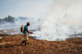 Extinguishing Forest Fires in Riau