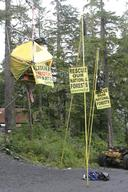 Blockade Action Tongass