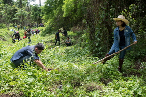 Volunteers Join Forces at Reforestation Activity in the North of Thailand
