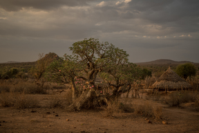 Ethiopian Village, Landscapes and Wildlife
