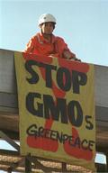 Action in Batangas Against Genetically Modified Products