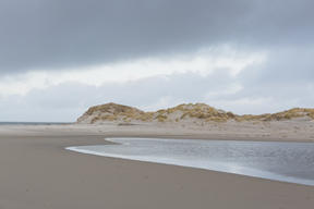 Beach on the Island of Borkum