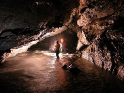 Cave Survey Tongass National Forest