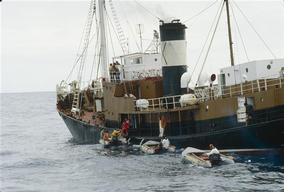 Action against Spanish Whaler Ibsa III