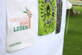 Regional Group Hosts Vegan Picnic in Bern