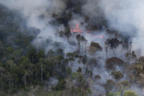 Forest Fires in Brazilian Amazon