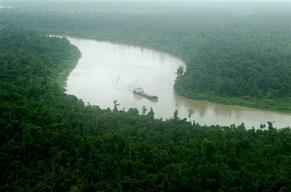 Paradise Forests – Lake Murray (Papua New Guinea: 2005)