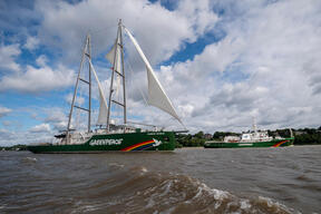MY Esperanza and MY Rainbow Warrior III in Hamburg