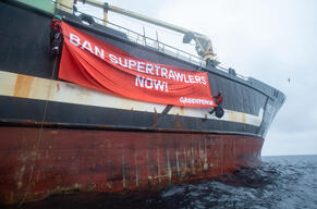 Protest against the Helen Mary Trawler in the North Sea