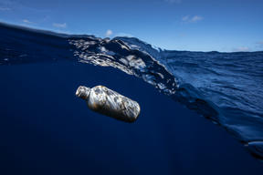 Plastic Floating in the Great Pacific Garbage Patch