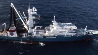 Action against the Biggest Tuna Fishing Vessel