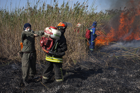 Firefighting Expedition to Krasnodar Region in Russia