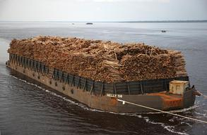 Log Barge near Dumai Port