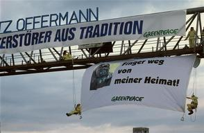 Forests Action at Offermann in Germany