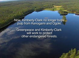 Greenpeace Announces End of Kleercut Campaign against Kimberly Clark (PSA)