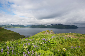 Dutch Harbor in Unalaska