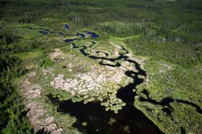 Wetlands in Alberta Tar Sands