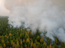 Forest Fires near Irkutsk Region in Russia