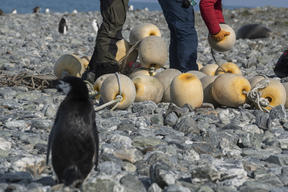 Fishing Gear Clean Up on Elephant Island in Antarctica