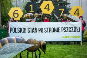 Poland Stands with Bees