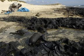 Palm Island Nature Reserve Oil Pollution - Environmental Consequences of the Israel-Lebanon War - 2006