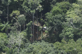 Aerial Image of Karipuna Indigenous Land in the Amazon in Brazil
