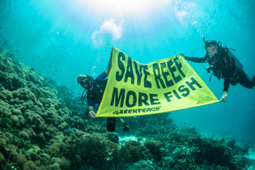 Underwater Banner at Raja Ampat in West Papua