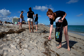 Actress Bonnie Wright with Greenpeace for Beach Clean up in Miami