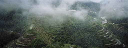 Iconic Rice Terraces in the Philippines