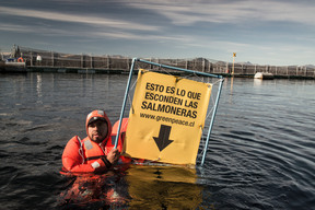 Action at Cermaq Salmon Farm in Chile