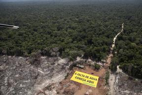 Deforestation and Water Crisis Banner in the Amazon