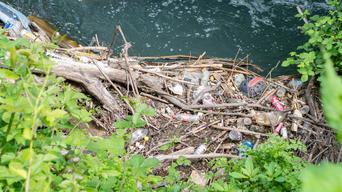 Litter by the River Stour in UK