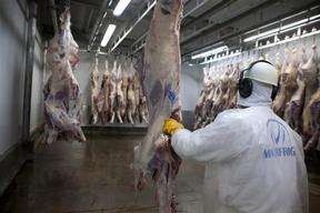 Marfrig Slaughterhouse Facilities in Brazil