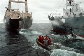 Greenpeace action against Japanese whaling , Southern Ocean