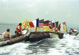 Inflatable with Logs and G8 Flags