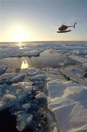 Helicopter flying over Pack Ice