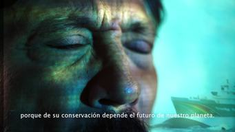 Advert Protect the Antarctic - Spanish Version (60 Seconds)