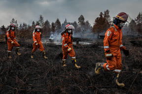 Forest Fires in Tanjung Taruna, Central Kalimantan