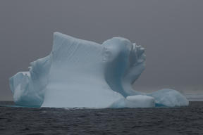 Iceberg in the Palmer Archipelago