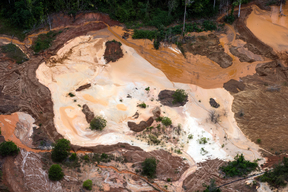 Illegal Gold Mine in the Amazon