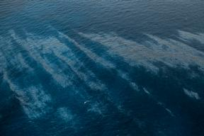 Oleg Naydenov Oil Spill in Spain