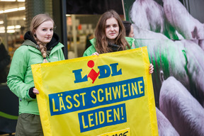 Protest against Lidl's Cheap Meat Policy in Cologne