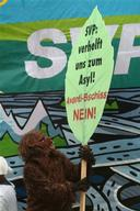 Climate Action against Climate Change and Avanti in Zurich